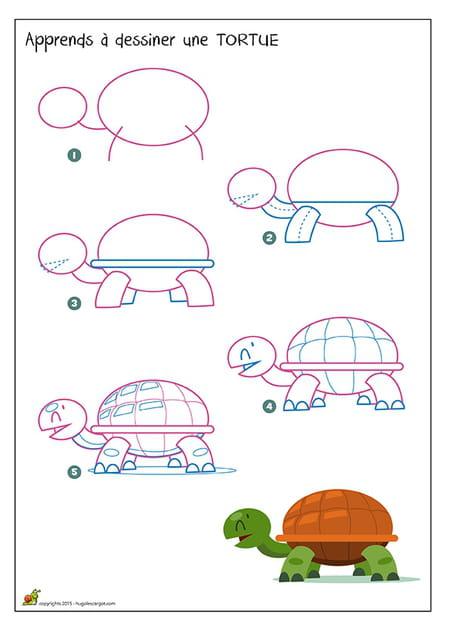 Dessiner une tortue - Dessin d une tortue ...