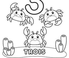 Chiffre3, les crabes
