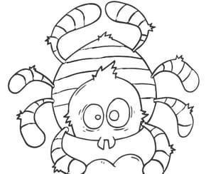 Araignée coeur rouge
