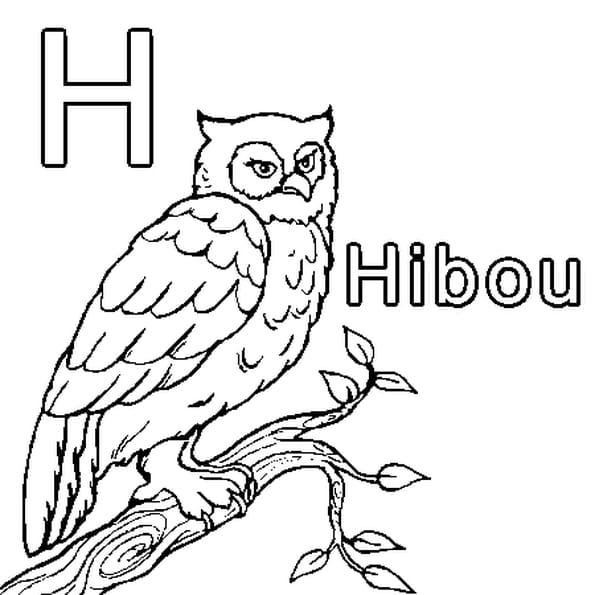 Dessin H comme Hibou a colorier