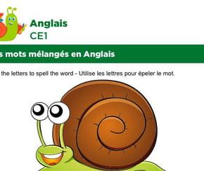 Les mots mélangés en Anglais, exercice 9