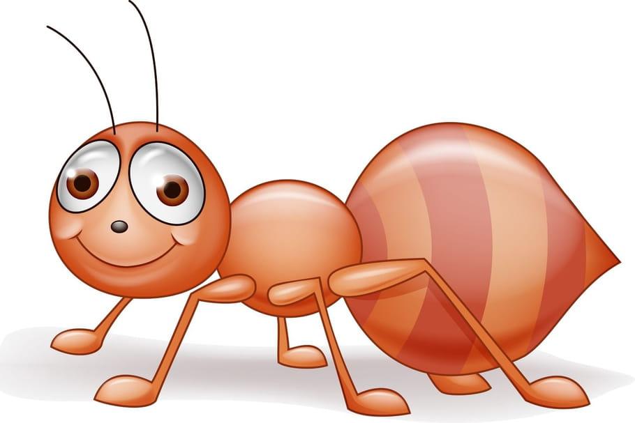 Comptine La fourmi