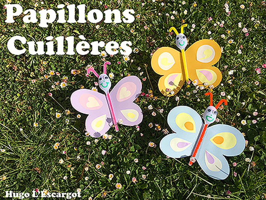 Papillons cuillères