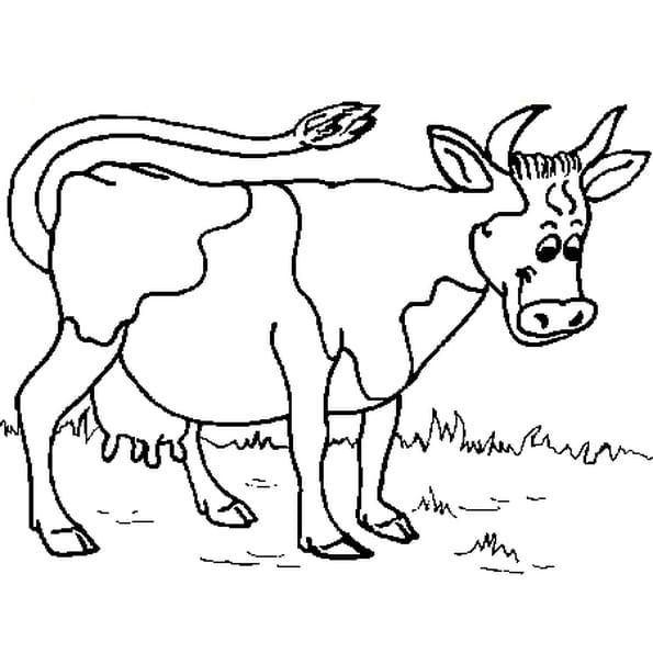 Vache coloriage vache en ligne gratuit a imprimer sur coloriage tv - Dessin d une vache ...