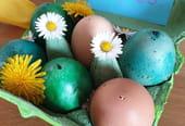 Œufs au chocolat surprise pour Pâques [VIDEO]