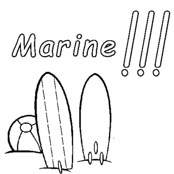Dessin Marine a colorier
