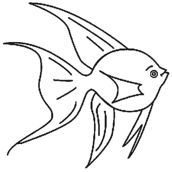Dessin poisson d'avril 3 a colorier