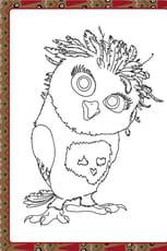Olga la chouette pygmée