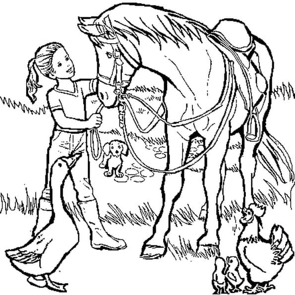 dessin animaux de la ferme a colorier
