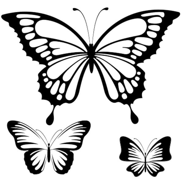 Coloriage Papillon dessin en Ligne Gratuit à imprimer