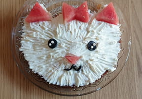 Gâteau chat [VIDEO]