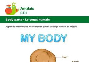 Le corps en Anglais, garçon vue de dos