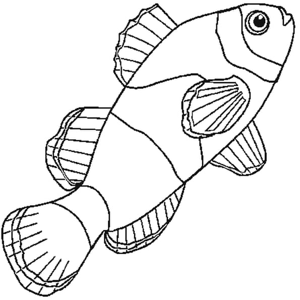 Coloriage poisson clown