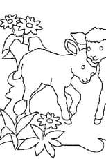 Coloriage moutons en Ligne Gratuit à imprimer