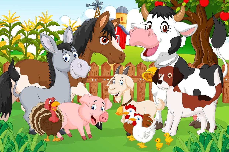 Comptines animaux pour enfants - Dessin de ferme ...