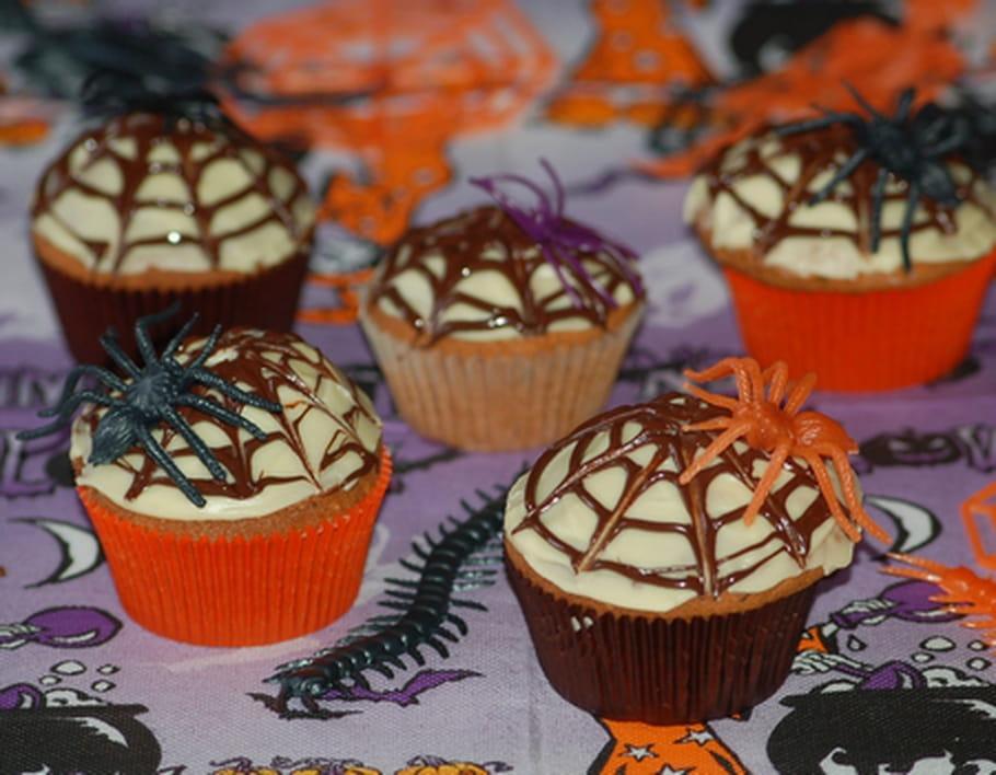 cupcakes toile d 39 araign e halloween. Black Bedroom Furniture Sets. Home Design Ideas