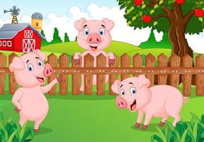 Comptines animaux de la ferme - Un petit cochon pendu au plafond ...