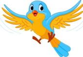 J'ai un oiseau dans mon panier