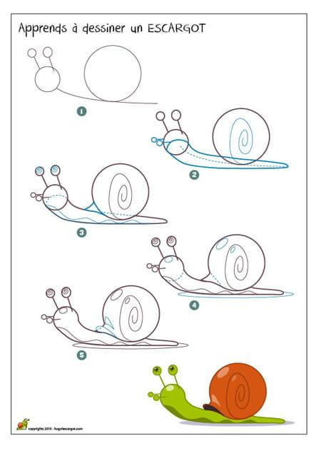 Dessiner un escargot - Apprendre a dessiner des chevaux ...