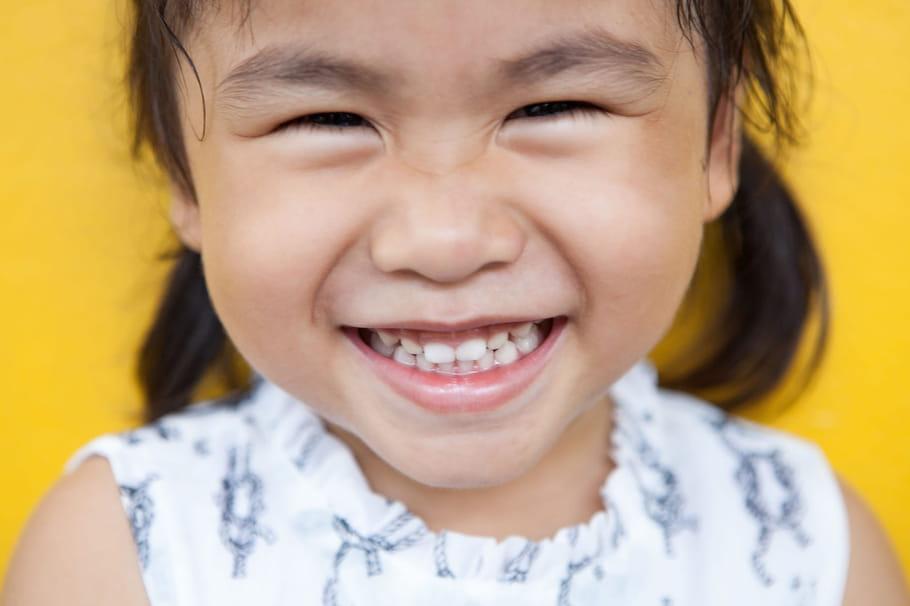 Quels sont les noms des dents?