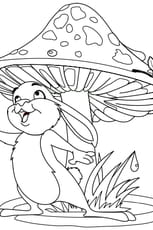 Coloriage Lapin et champignon