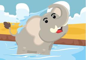 L'éléphant se douche