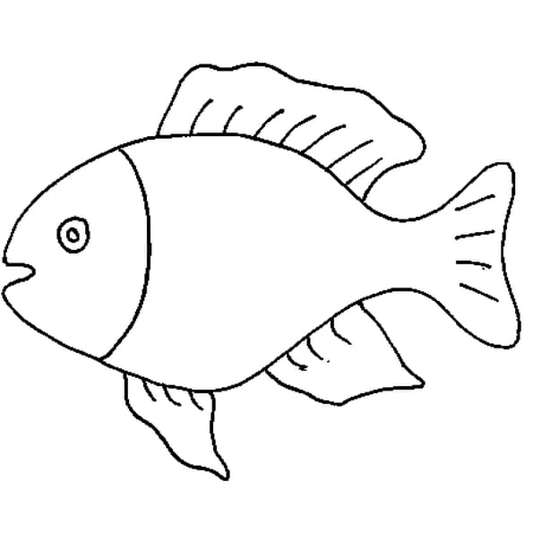 Dessin poisson d'avril a colorier