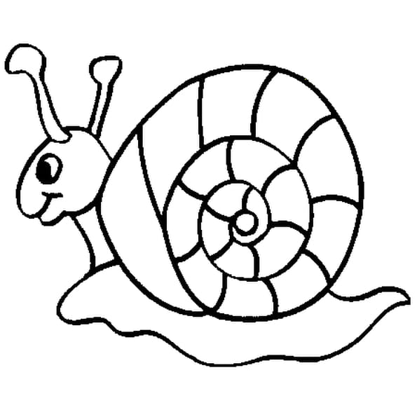 Coloriage escargot rigolo