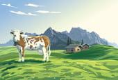 Si la Terre était une vache