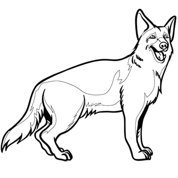 Coloriage chien berger allemand en ligne gratuit imprimer - Dessin chien facile ...