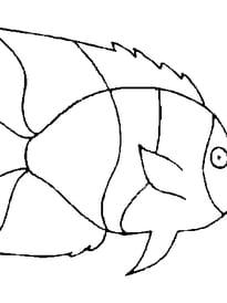 poisson avril 6