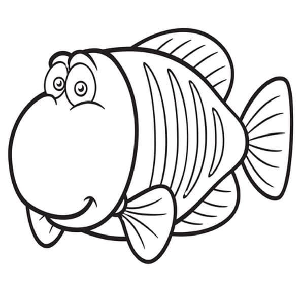 Coloriage gros poisson en ligne gratuit imprimer - Poisson rouge rigolo ...