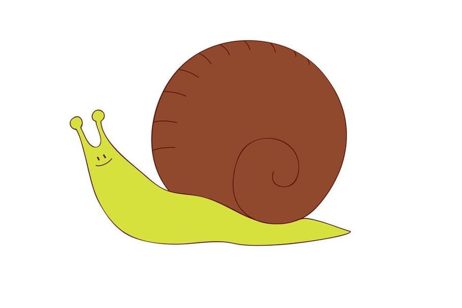 Comptine Oh l'escargot!
