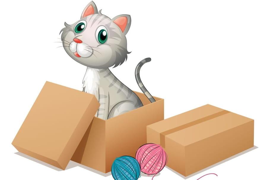 Comptine Un petit chat gris