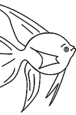Coloriage poisson d'avril 3