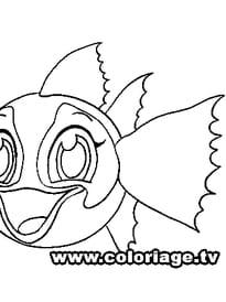Zooble poisson