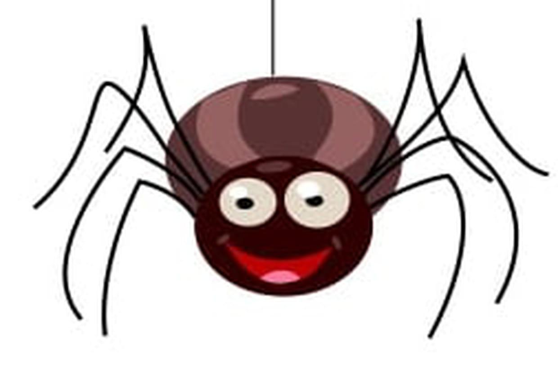 Dessiner Une Araignée