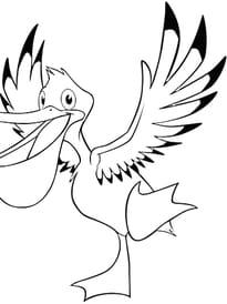 Oiseau Pélican