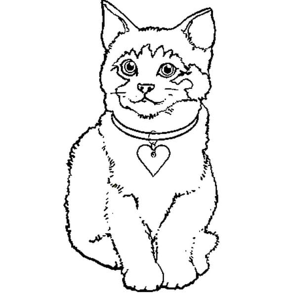 Petit chaton coloriage petit chaton en ligne gratuit a - Dessins de chat ...