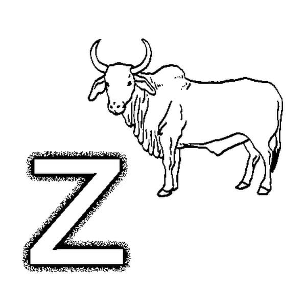 Coloriage Lettre Z En Ligne Gratuit à Imprimer