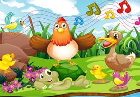 Le rock des gallinacés
