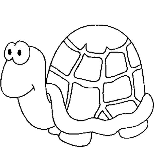 Dessin de tortue - Dessin d une tortue ...