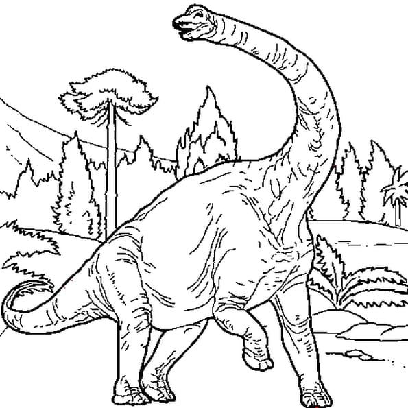 Coloriage Brachiosaure en Ligne Gratuit à imprimer