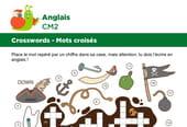Mots croisés en Anglais sur le thème des objets de pirates
