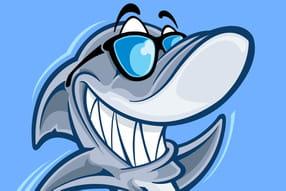 Requins sympas