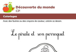Coloriage, le pirate et son perroquet