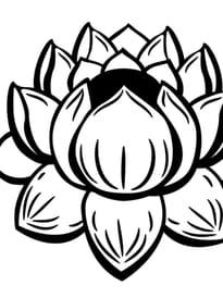 Coloriage fleur sur - Dessin de fleur facile ...