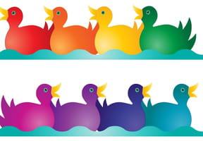 La semaine des canards