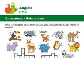 Mots croisés en Anglais sur le thème des animaux sauvages