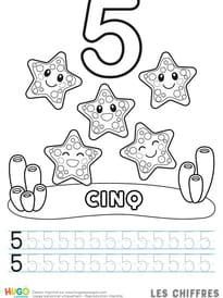Chiffre5, les étoiles de mer